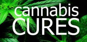 cannabiscures